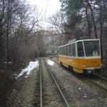 Sofias Straßenbahn - hier in einem Wald